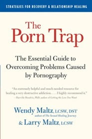 The essential guide to overcoming problems caused by pornography