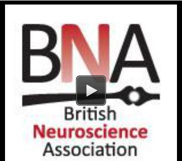 British Neuroscience Association