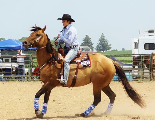 man.horse_.2.jpg