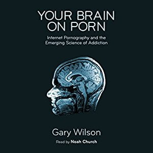 Your book on Porno audiobook