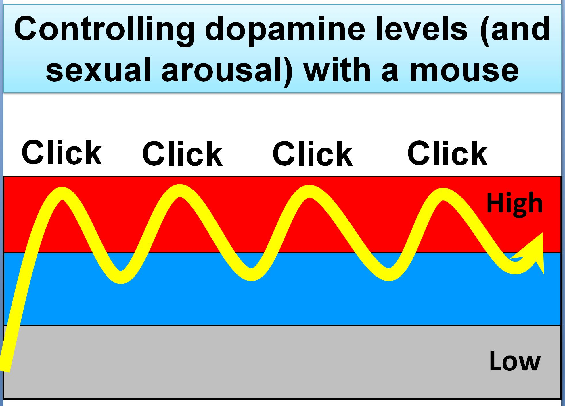 controlling dopamine levels (and sexual arousal) during porn viewing, with the clicks of a mouse